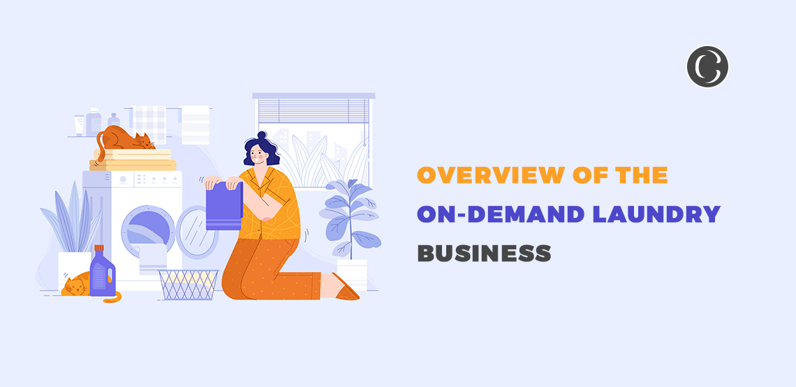 Insights Of An On-Demand Laundry Business